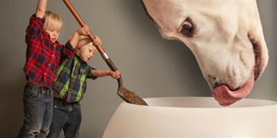 隔空選購狗糧的三個注意事項
