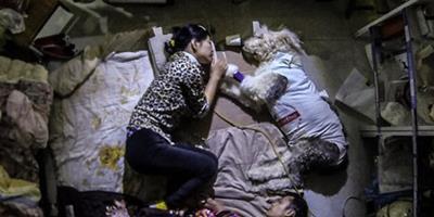 夫妻為狗狗買蟲草補營養 寵物醫院打地鋪陪護