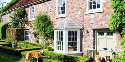 英公司推超豪華狗狗旅遊計畫,費用高達45萬