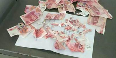 一覺醒來發現櫃裡的1100塊錢被寵物狗咬稀碎
